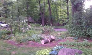 Oak bed before